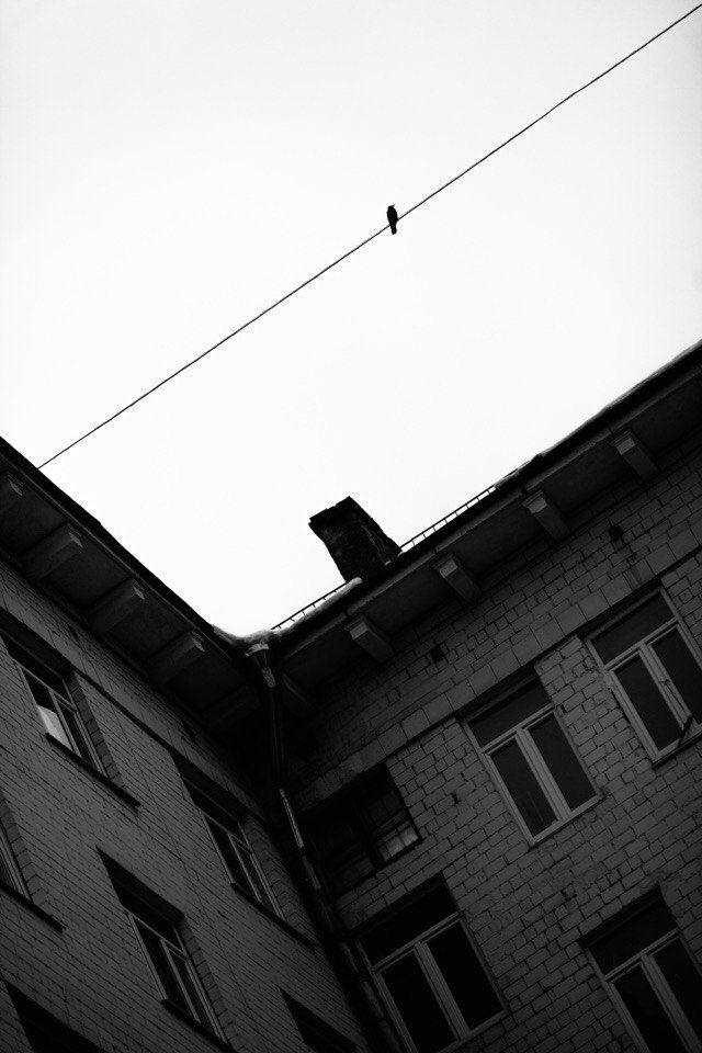 , Александра Липкина