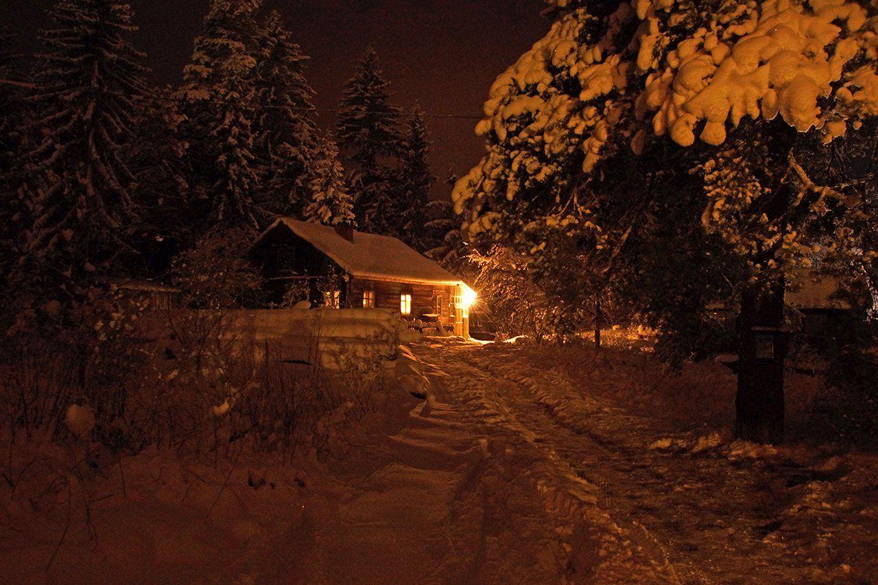 зима, ленинградская область, Петр Косых