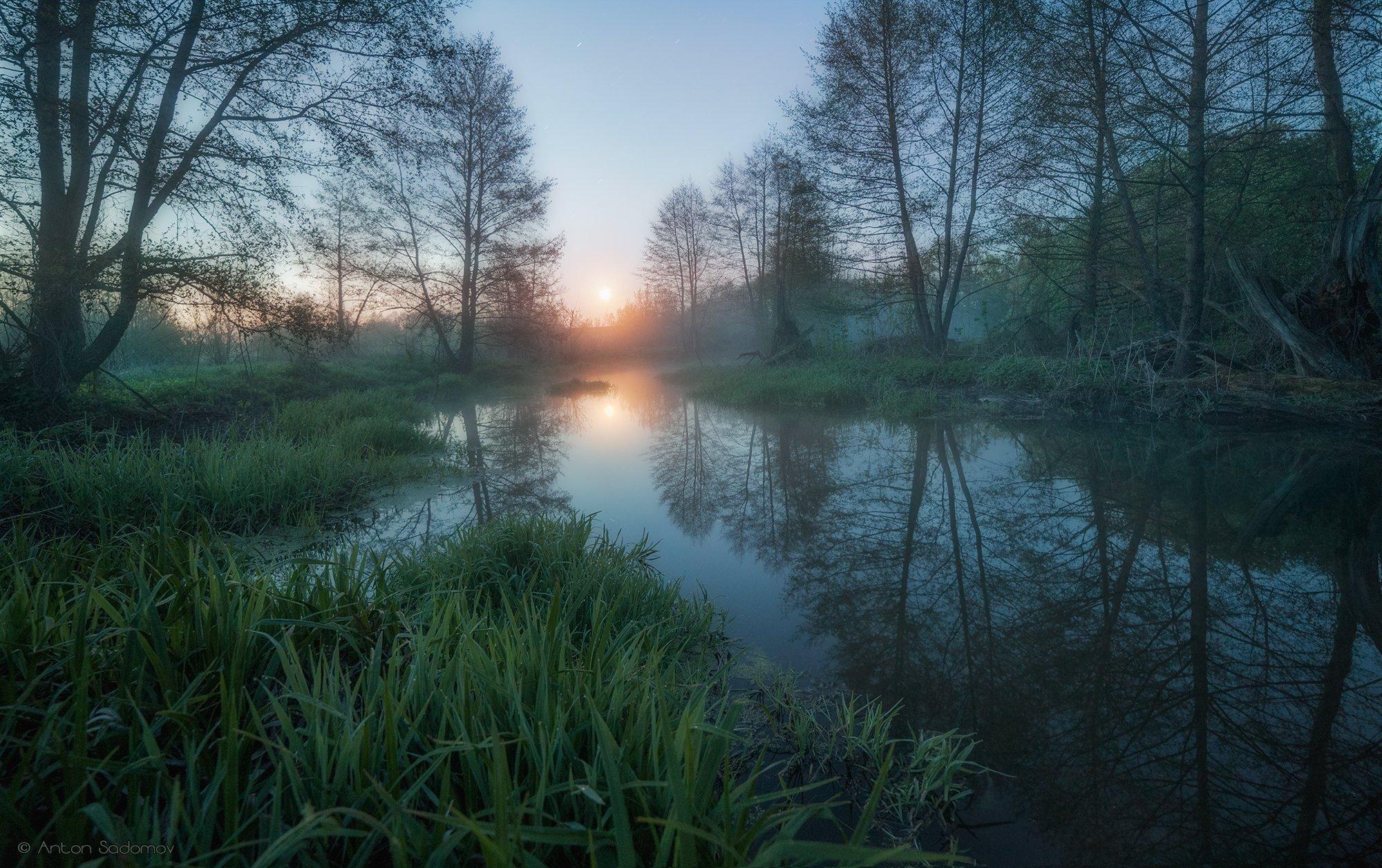пейзаж, рассвет, лес, река, вода, деревья, татищево, долга, саратов, Антон Садомов