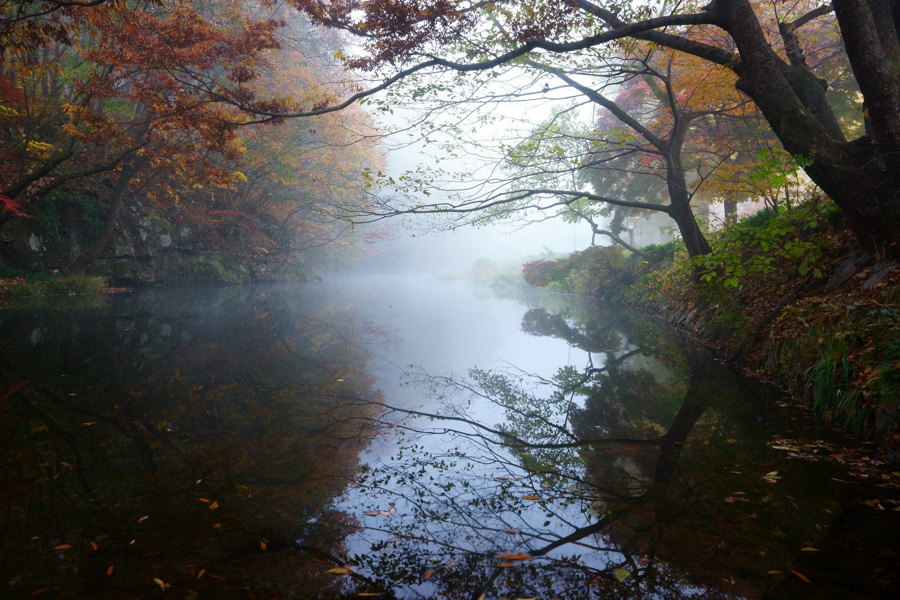 asia,korea,south korea,jeollabukdo,seonunsa temple,morning,misty,stream,fog,reflection, Shin