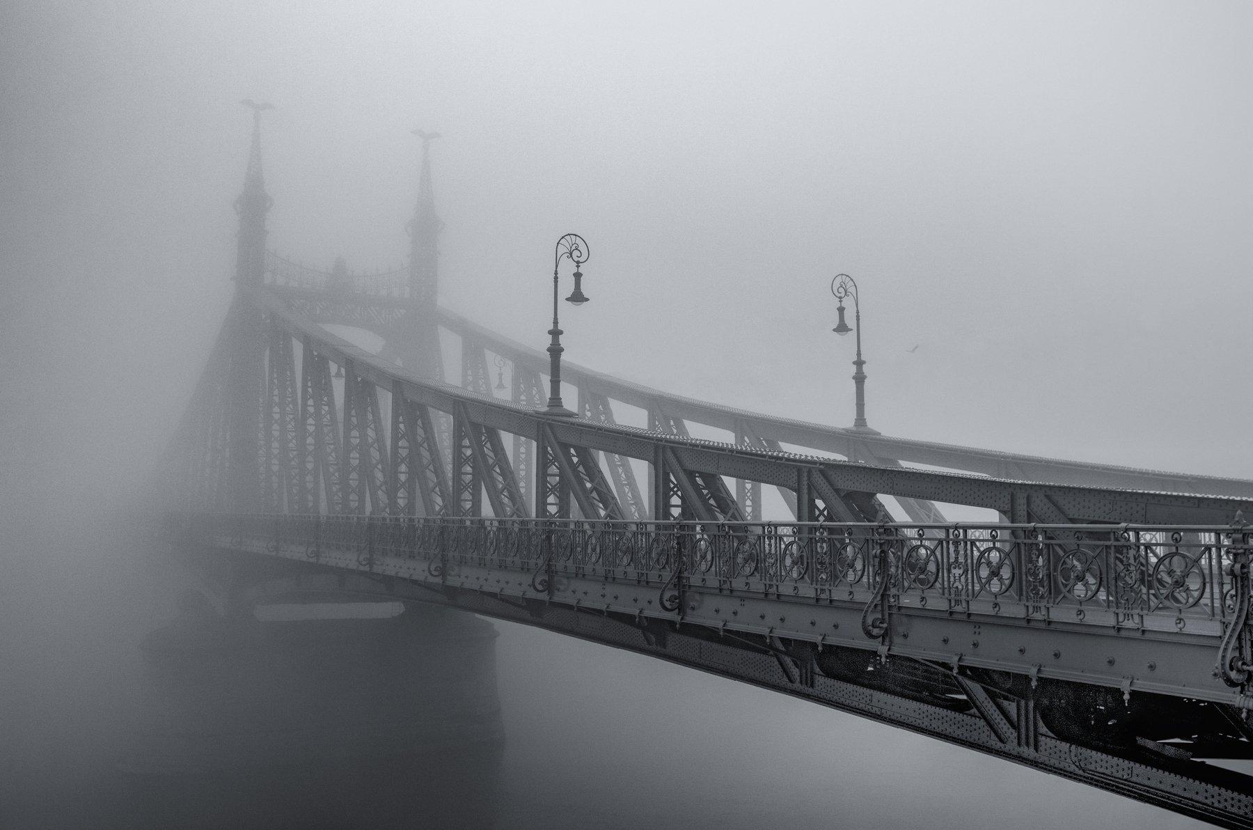 будапешт, мост, туман, река, город, пейзаж, венгрия, европа, путешествие, архитектура, черно-белый, b&w, Сергей Давыдов