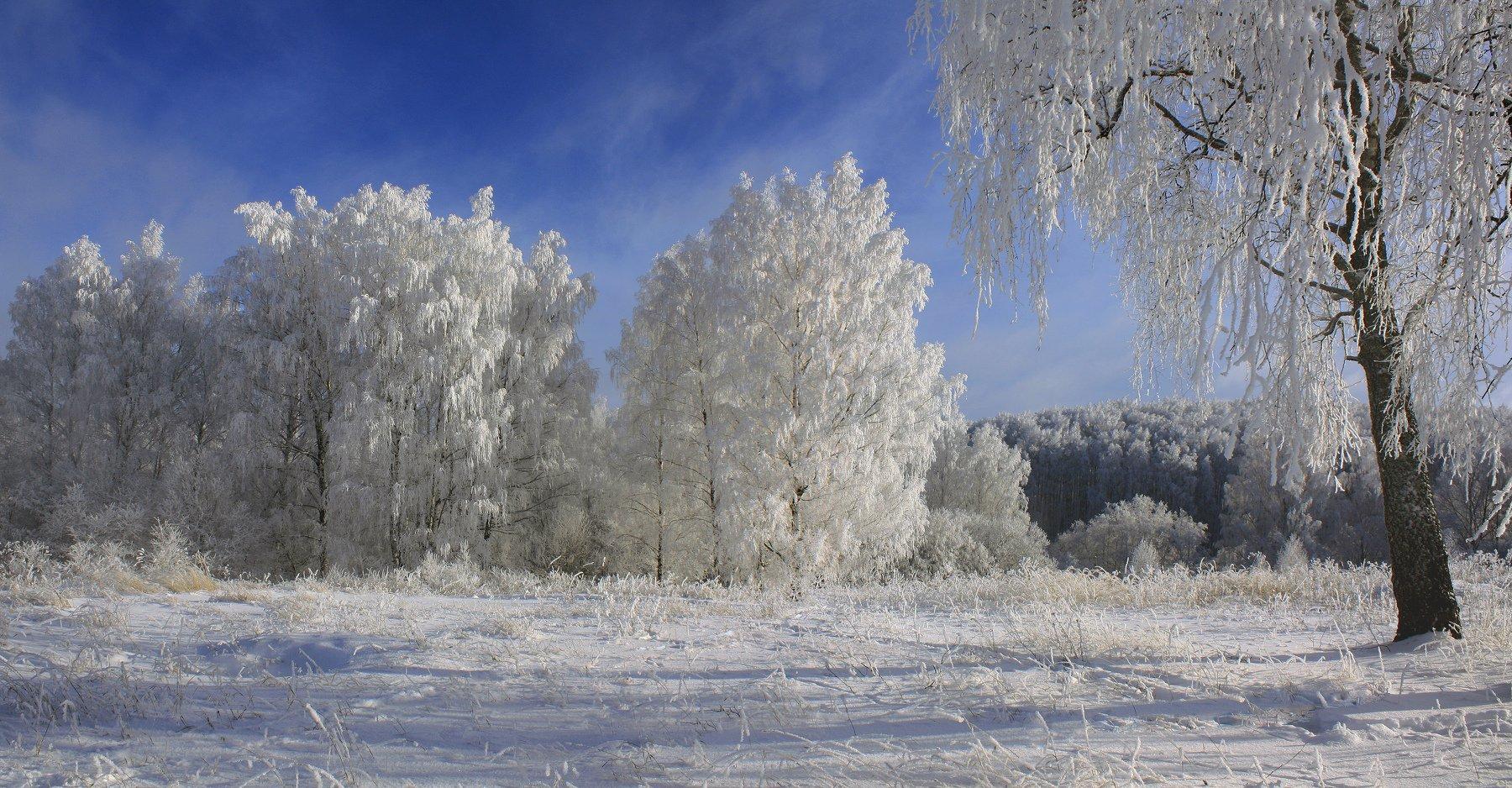 зима, Свистков Александр