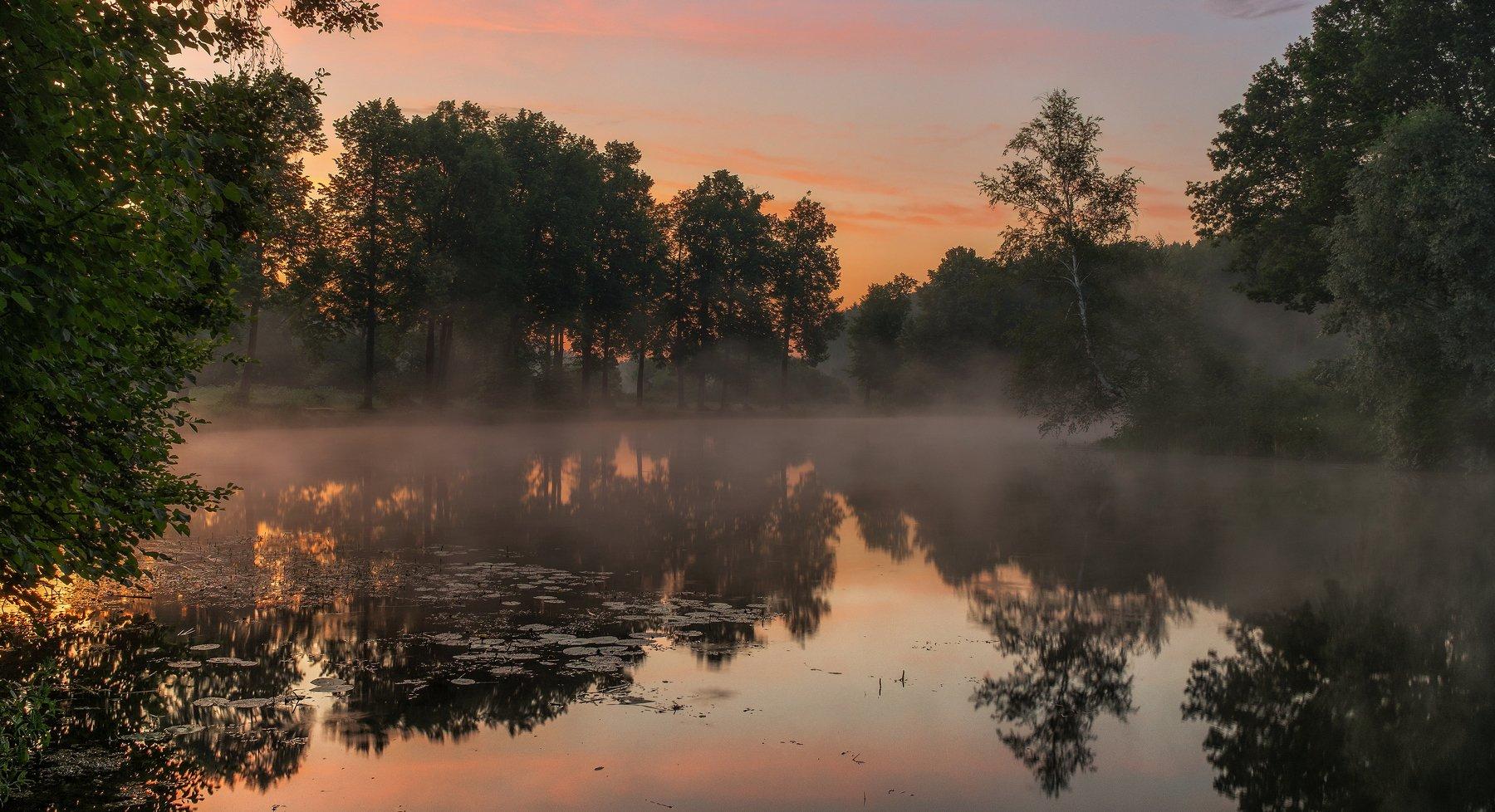 середниково, усадьба, подмосковье, пейзаж, утро, рассвет, туман, пруд, Сергей Давыдов