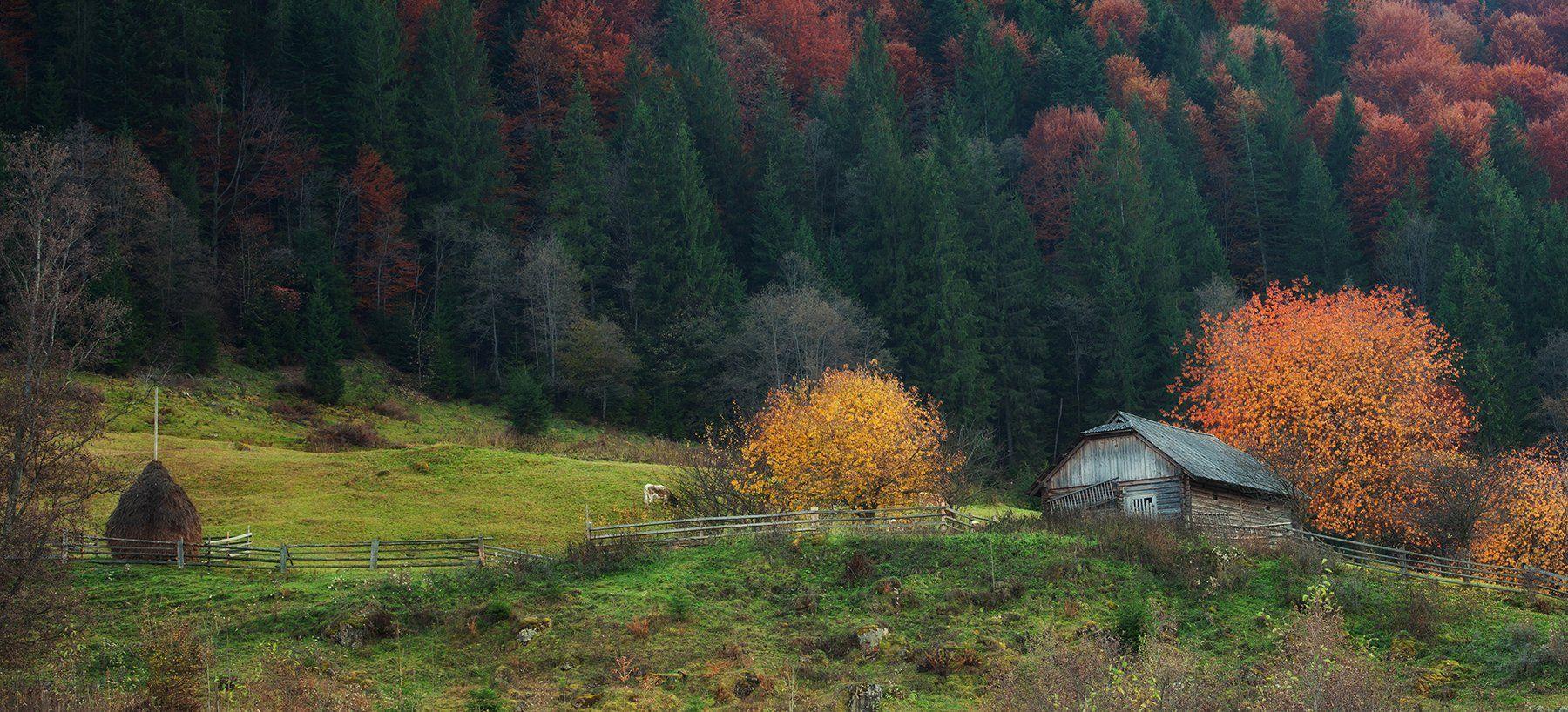 горы, лес, изба, осень, Вьюшкин Игорь