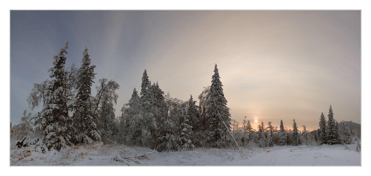 декабрь, зима, южный, урал, челябинская, область, хребет, уреньга, иней, ели, Данил Ромодин
