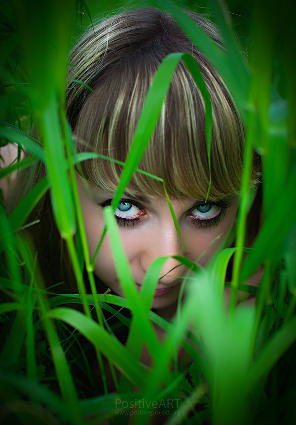 девушка, глаза, трава, дикость, тигрица, Positiveart