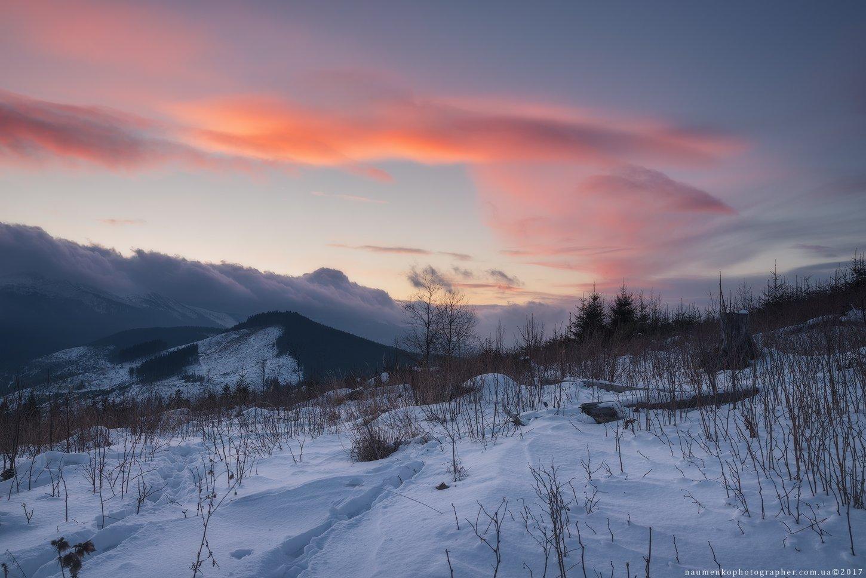 горы, природа, карпаты, красивый, говерла, пейзаж, снег, украина, петрос, холод, небо, лес, путешествия, зима, дерево, рождество, мороз, фон, карпатский, свет, белый, новый, год, снежный, вечер, страна, вид, дерево, живописный, Александр Науменко