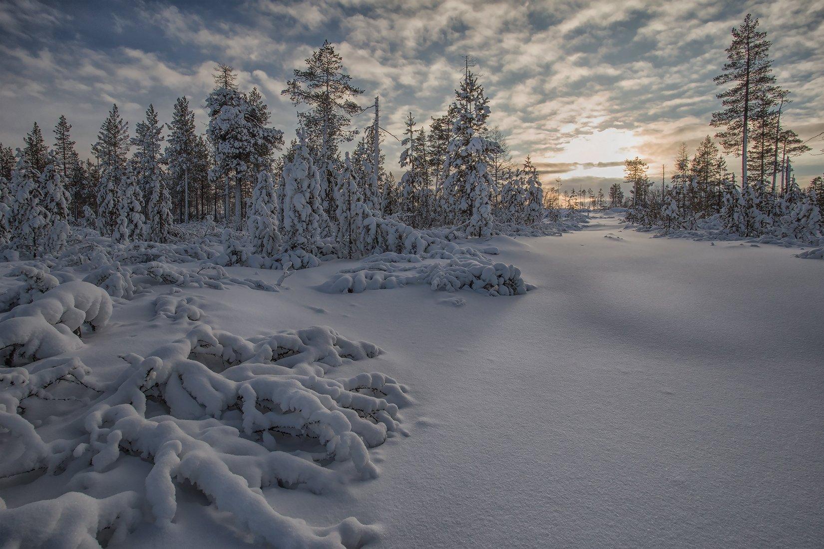 якутия, нерюнгри, зима, Евгения Левина