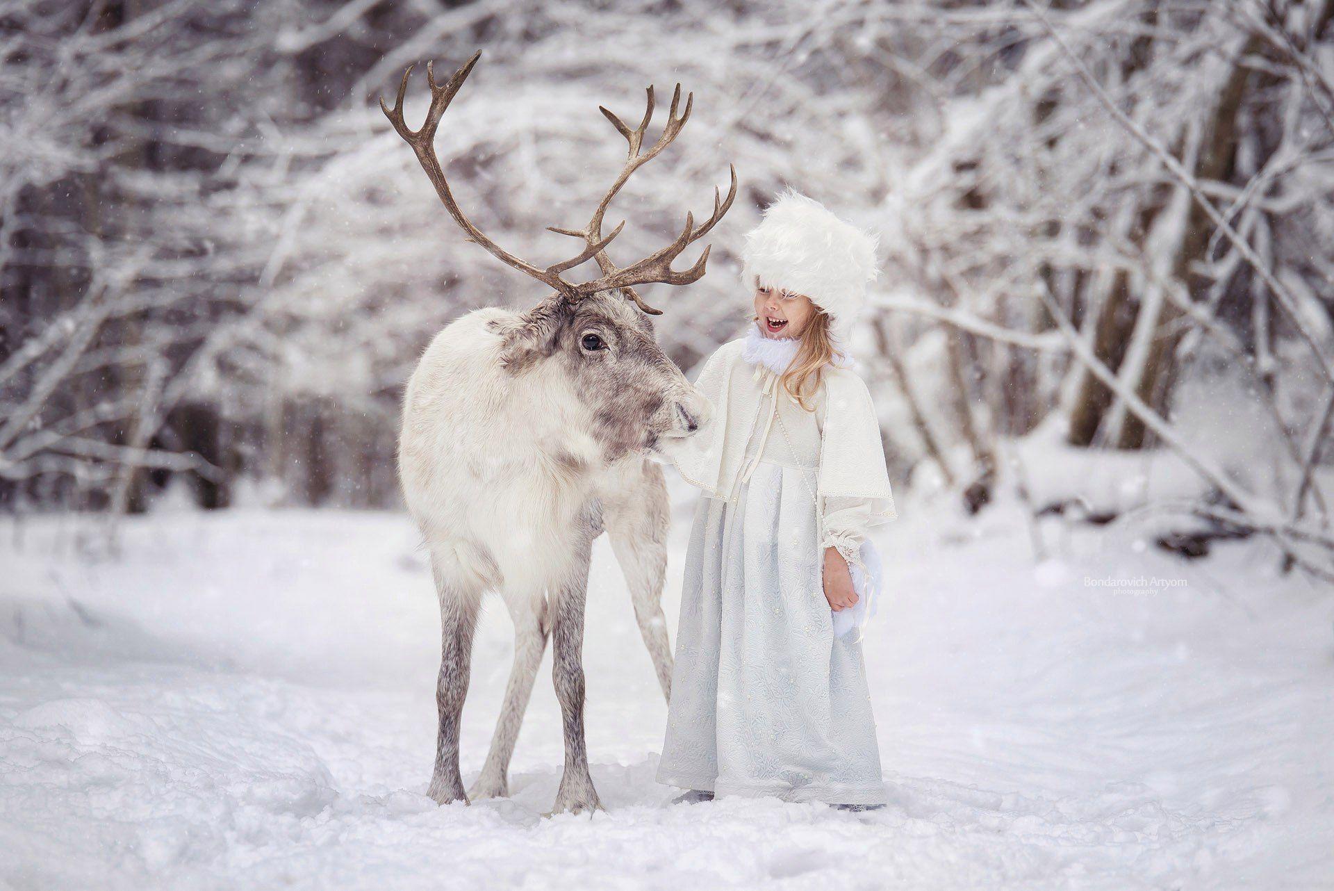 девочка, портрет, снег, зима, олень, сказка, лес, рождество, Артем Бондарович