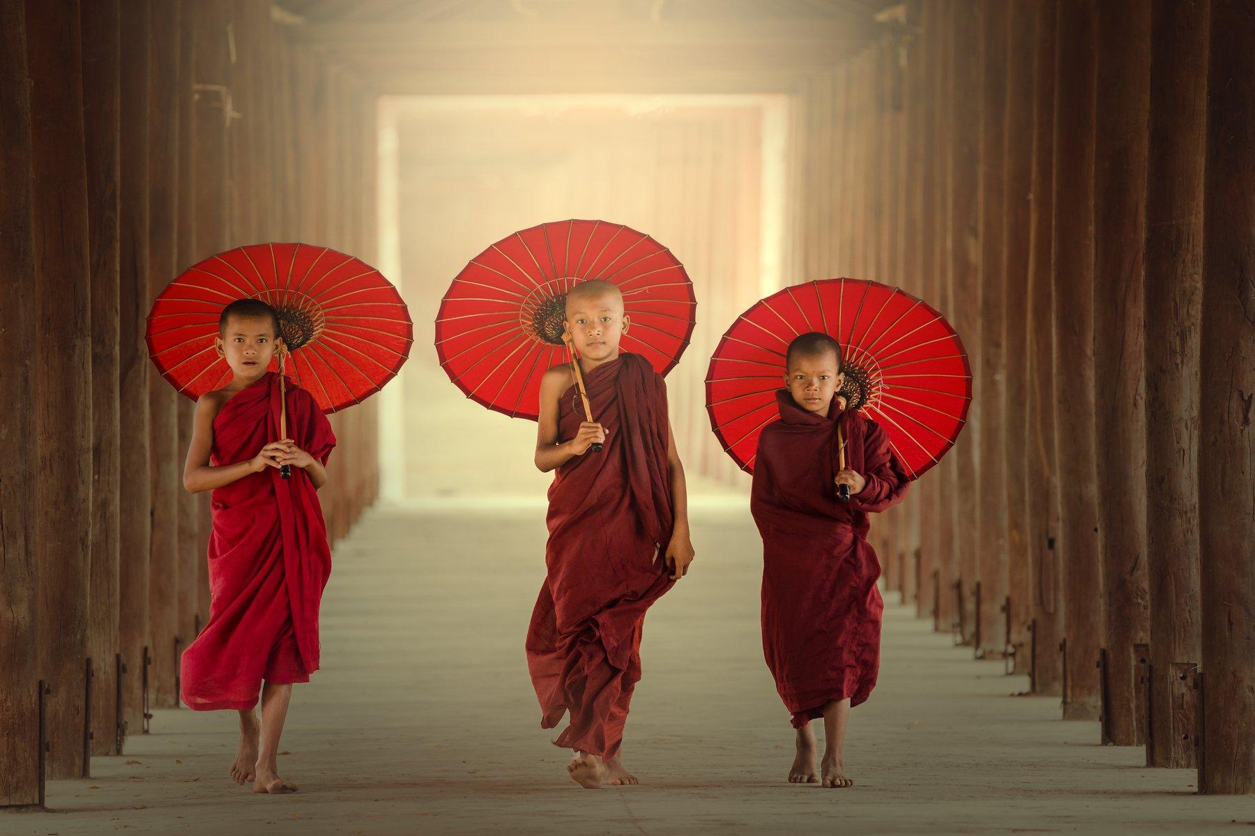 buddha,buddhism,buddhist,boys,portrait,, SUTIPORN SOMNAM