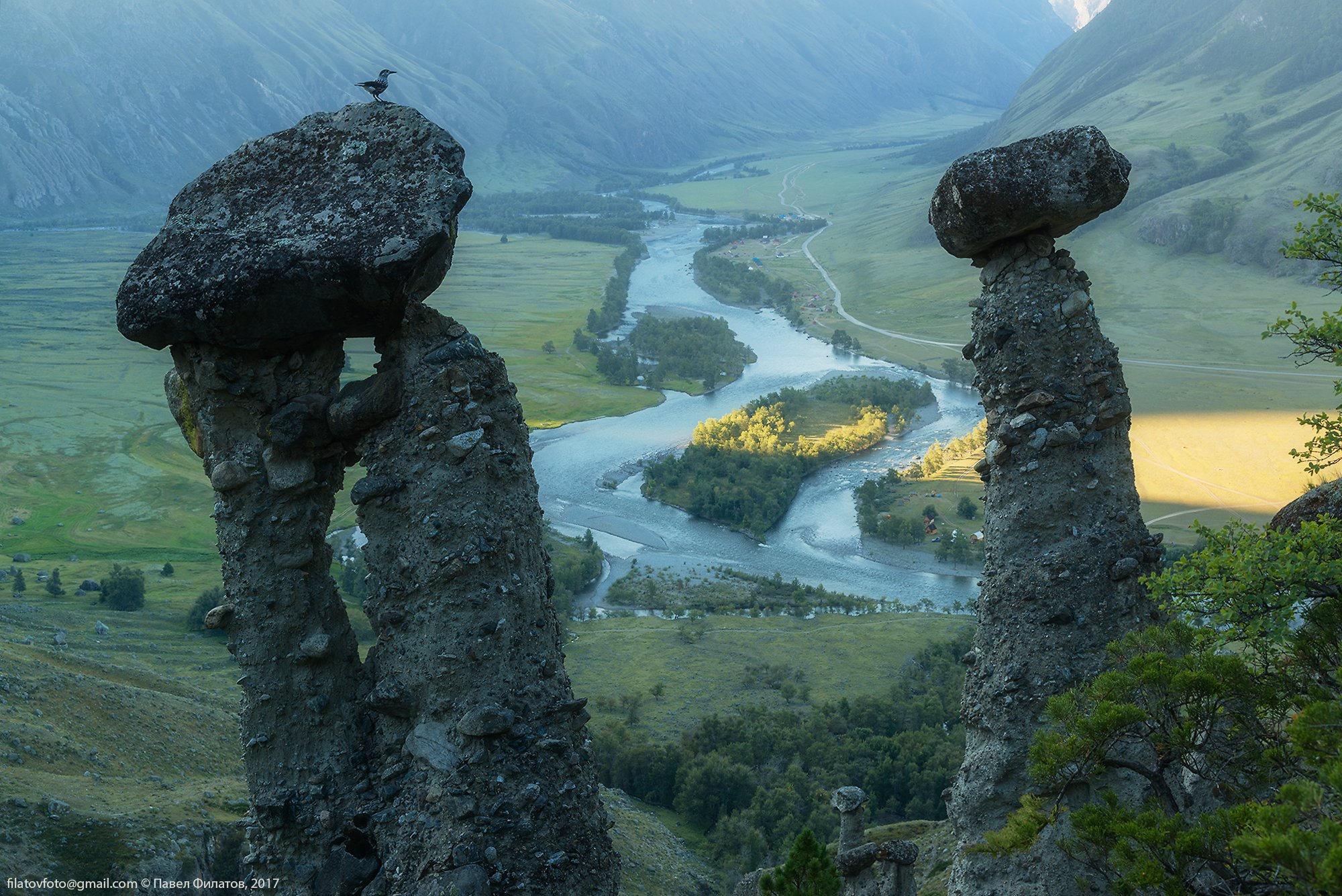 алтай, altai, сибирь, siberia, pavel filatov, павел филатов, чулышман, каменные грибы, рассвет, кедровка, Павел Филатов