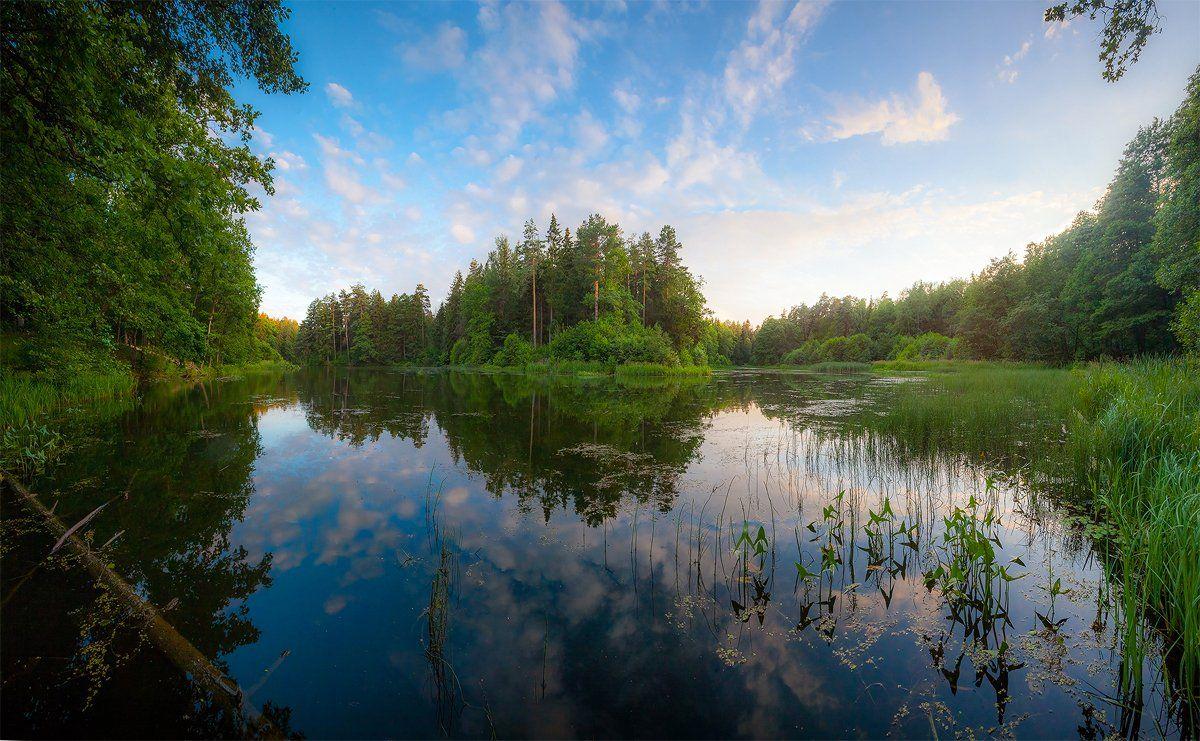 лето, вечер, озеро лес, благодать, природа, печерск, могилев, беларусь, Копычко Михаил