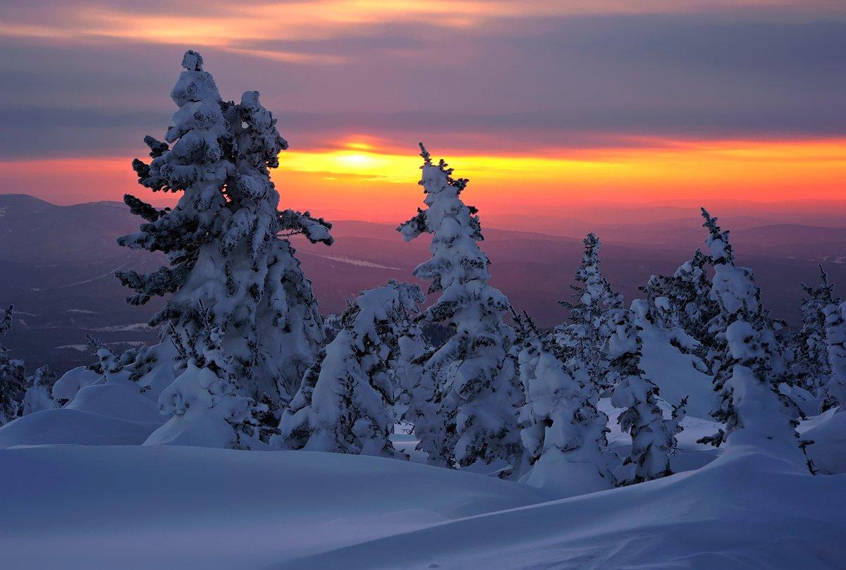 зима, снег, вечер, солнце, облака, кедры, пихты, шерегеш, горная шория, сибирь, Валерий Пешков