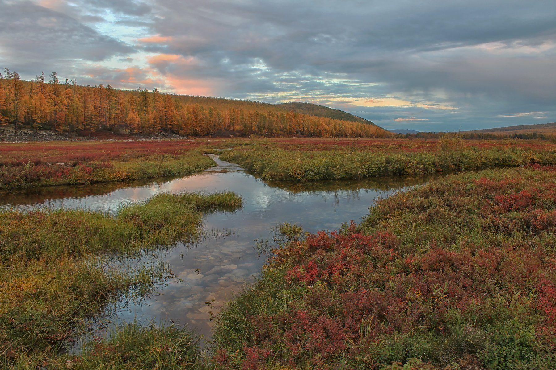 якутия, нерюнгри, осень, самокит, река_самокит, Евгения Левина