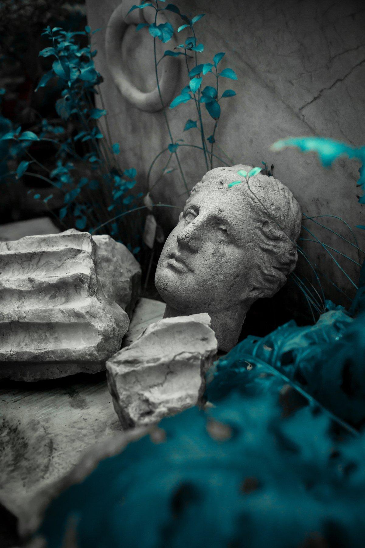 гипс, голова, венера, питер, город, санкт-петербург, ботаническийсад, растения, зелень, сад, красиво, скульптура, искусство, Кайсина Ирина