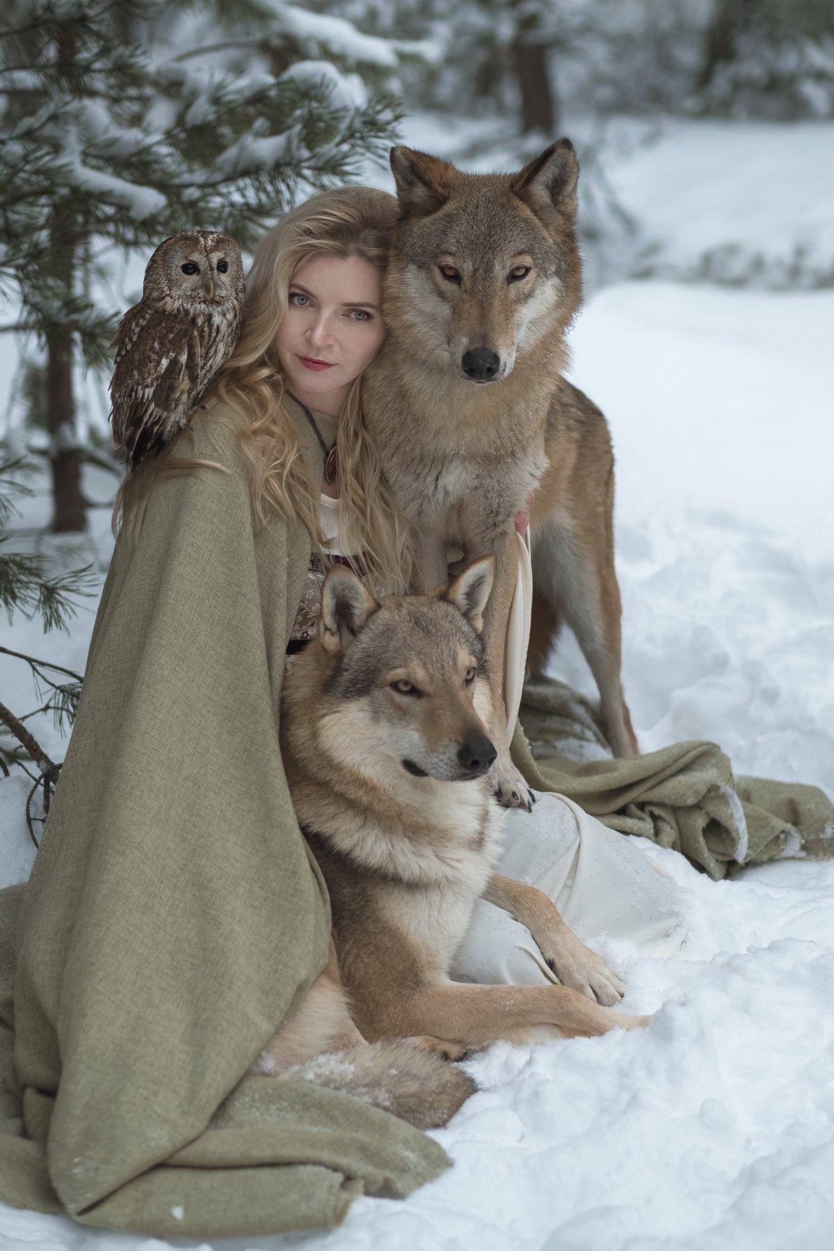photo, wolf, owl, girl, dream, Ольга Баранцева