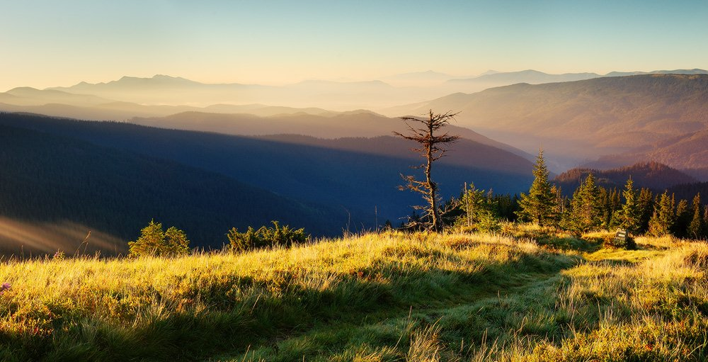 горы, карпаты, горганы, рассвет, закат, котенко, Котенко Александр