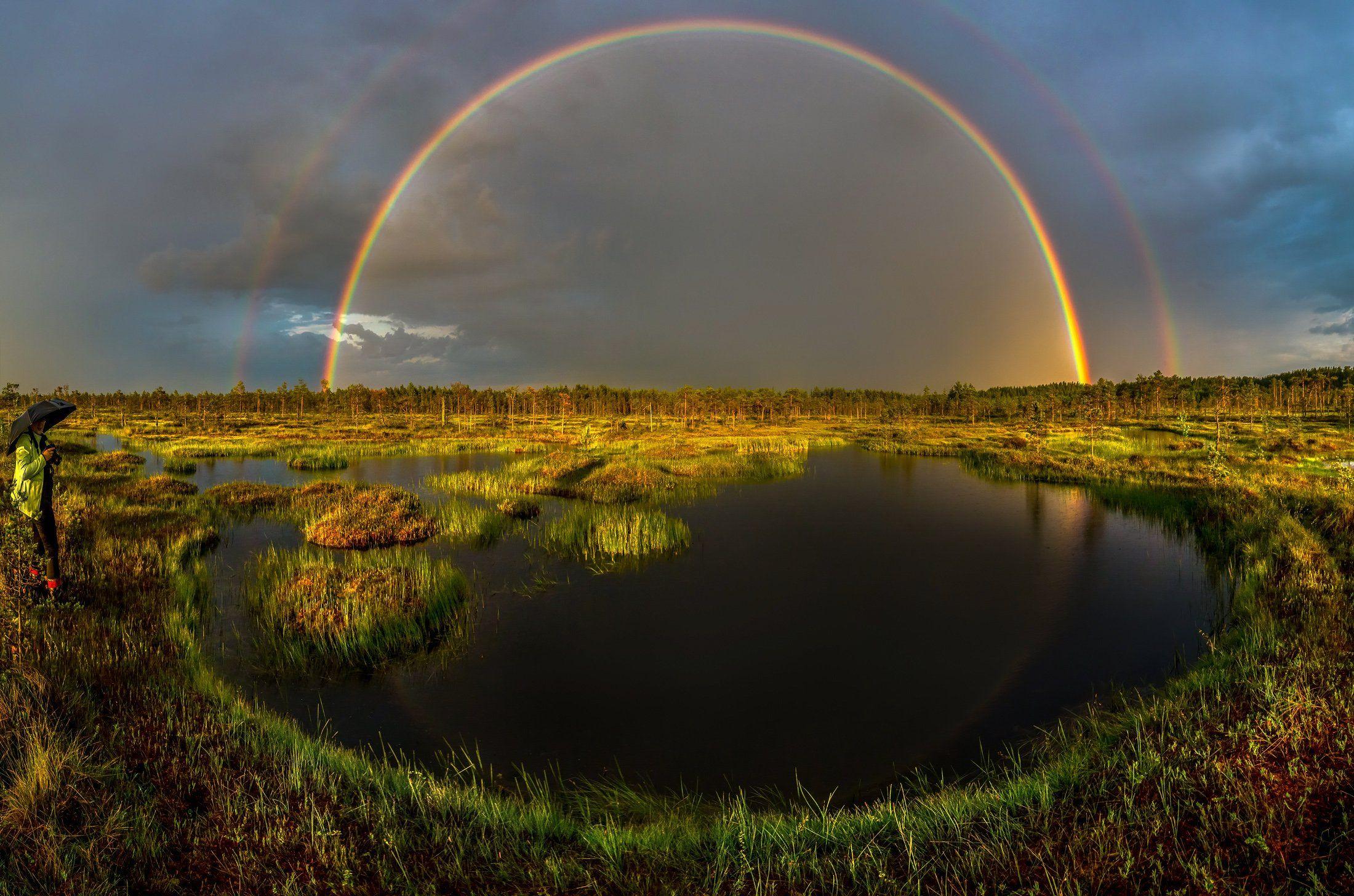 болото, радуга, лето, ливень, небо, фотопроект, ученик, закат, ленинградская область., Лашков Фёдор