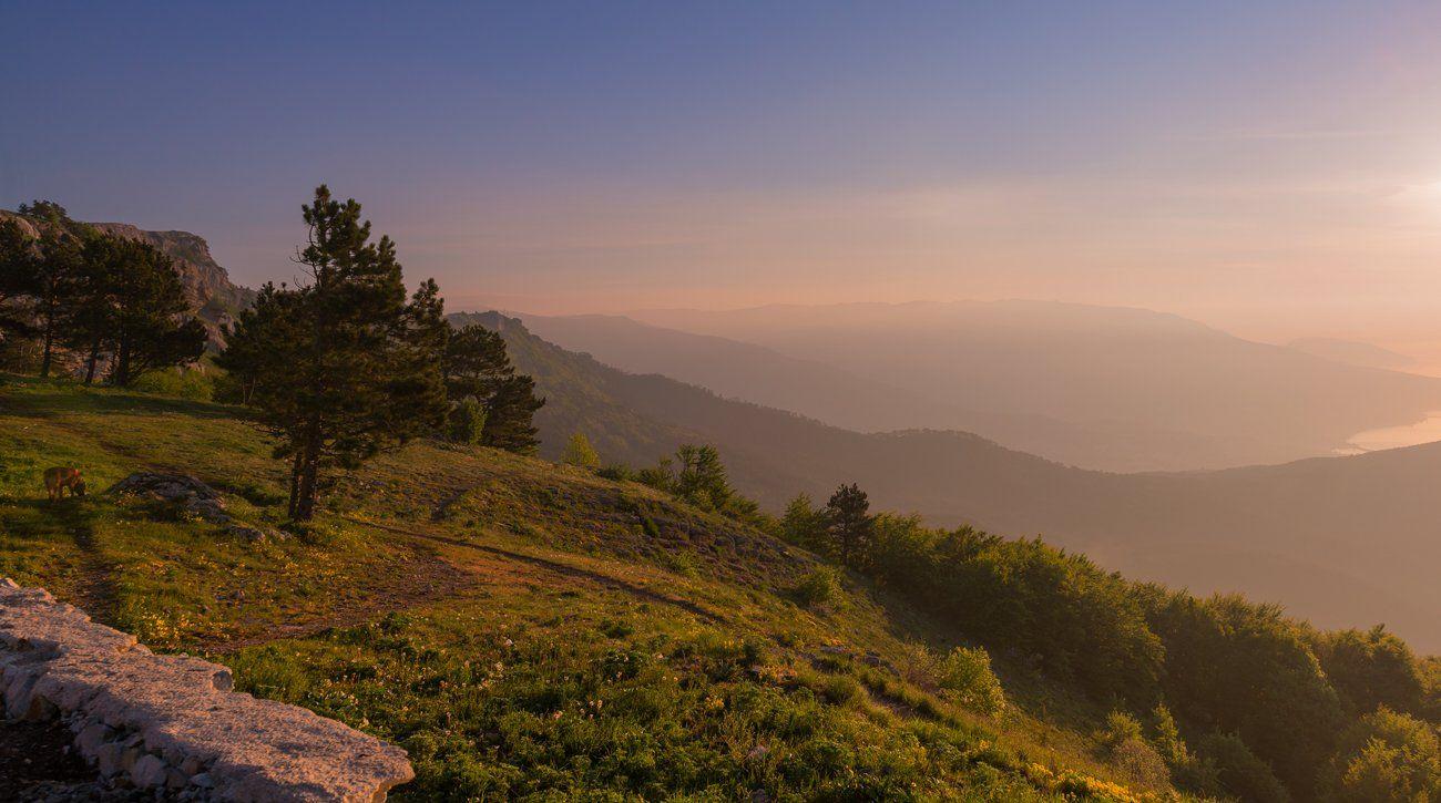 горы, утро, рассвет, Галанзовская Оксана