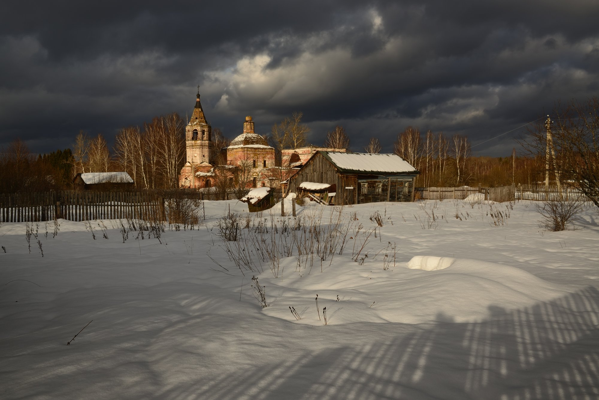 , Максим Евдокимов ( www.wildphotorus.ru )