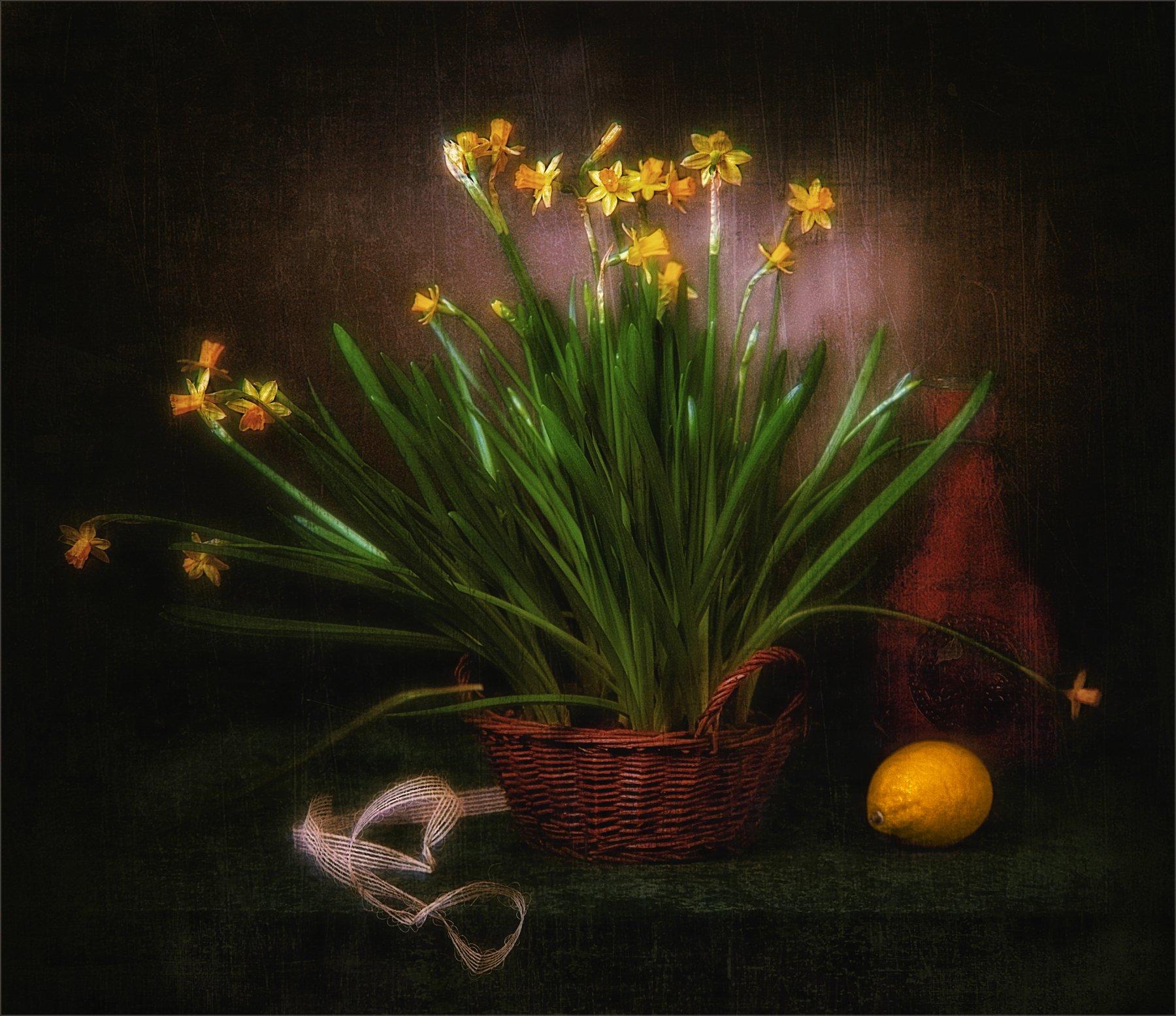 still life, натюрморт, нарциссы, цветы, природа, лимон, бутылка, лента, винтаж, ретро, стилизация, корзинка, Михаил MSH