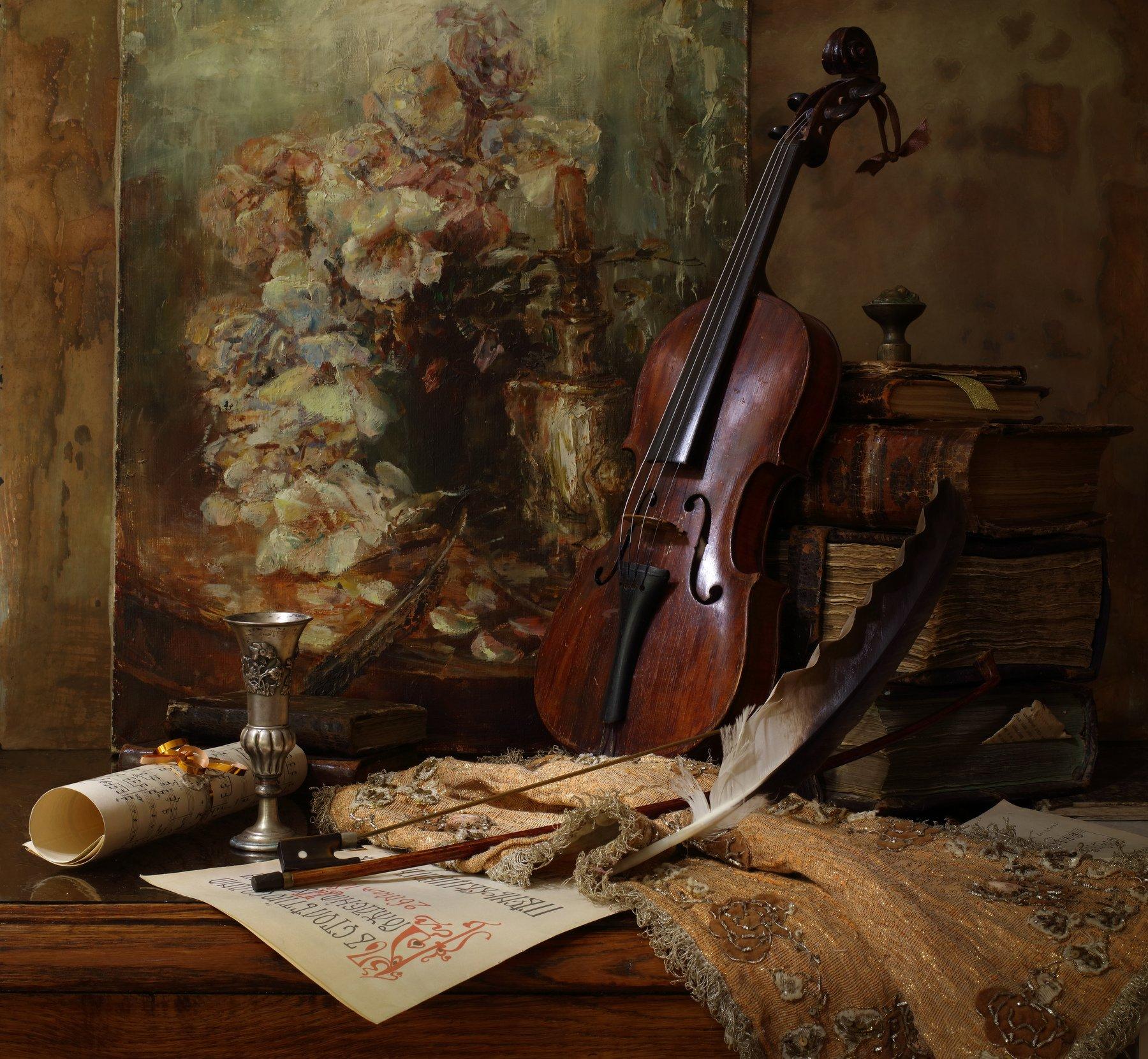 скрипка, музыка, картина, книги, Андрей Морозов