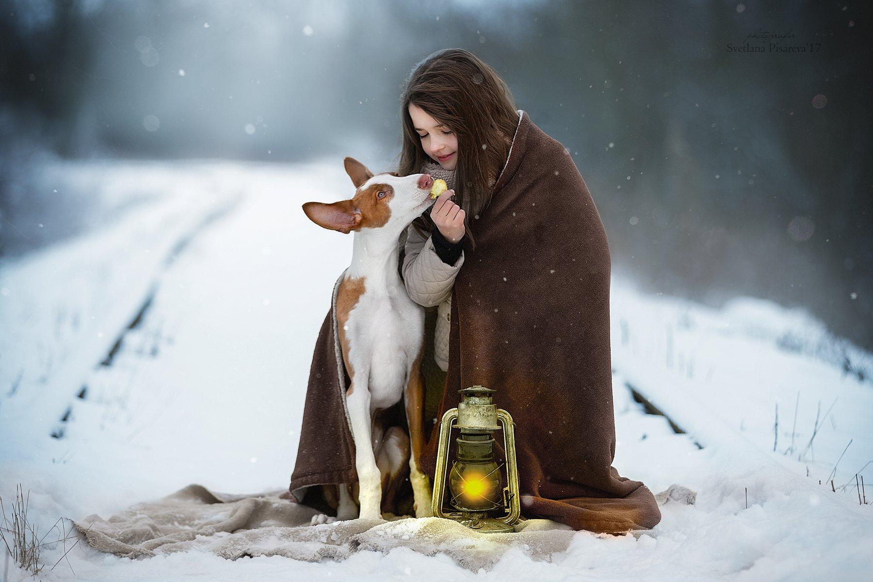 ребенок, девочка, собака, фонарь, дорога, зима., Светлана Писарева