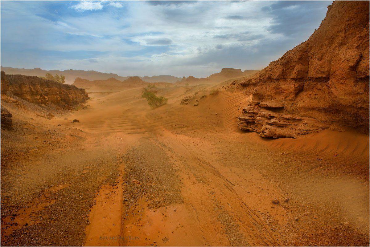 Кутыгин, Монголия, Херменцав, Харманцав, харман, Хермен, буря, песок, песчаная, песочная., Кутыгин Эдуард