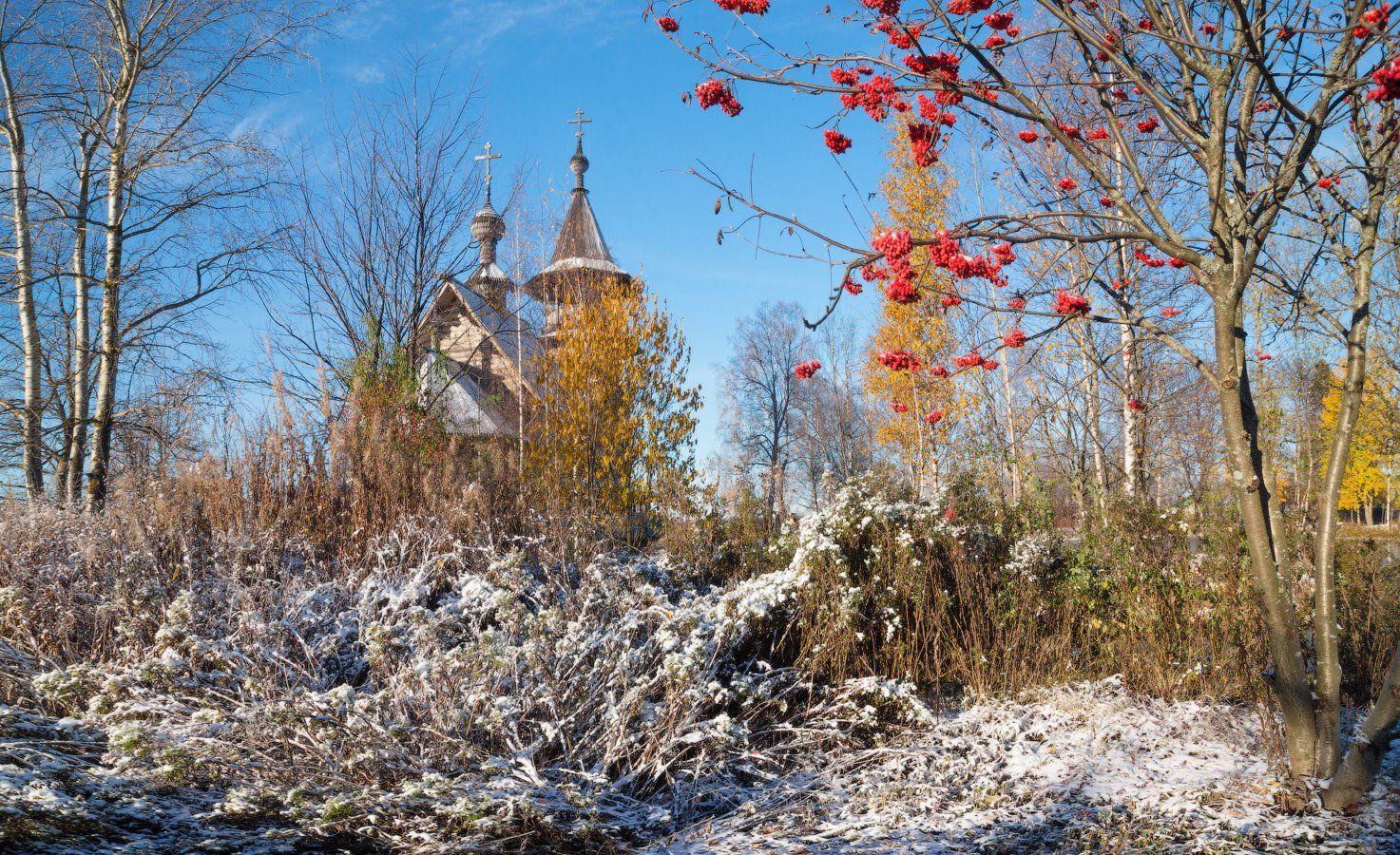 рябина, осень, золотая, храм, снег, солнце, Виктор Климкин