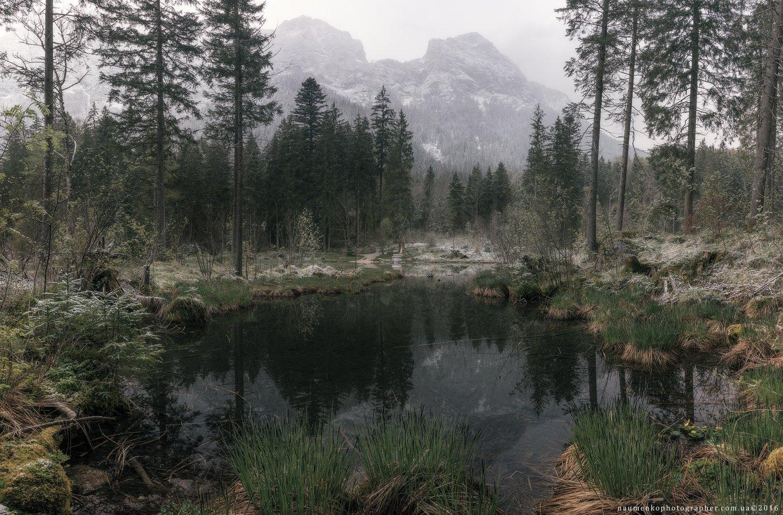 европа,германия,хинтерзее,озеро,осень,бавария,рамзау,путешествия,альпийский,альпы,удивительные,австрия,баварская,красивый,большой,синий,прозрачный,облака,европейский,лес,немецкий,зеленый,остров,земля,пейзаж,величественный, Александр Науменко
