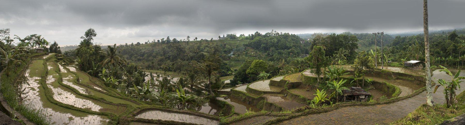 бали, остров, сказка, тропики, экзотика, индонезия, Марина Мудрова