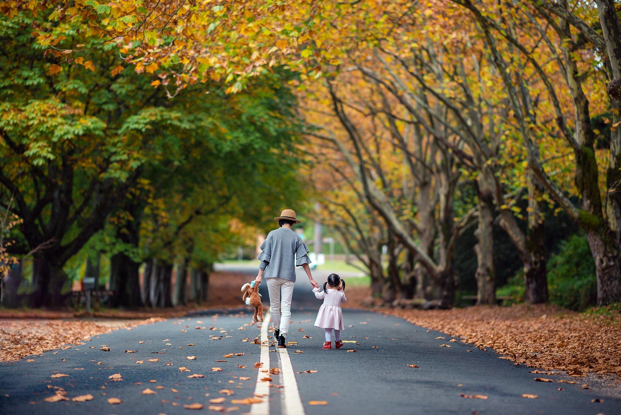 kid, girl, child, autumn, leaves, road, colours, family, together, Derek Zhang