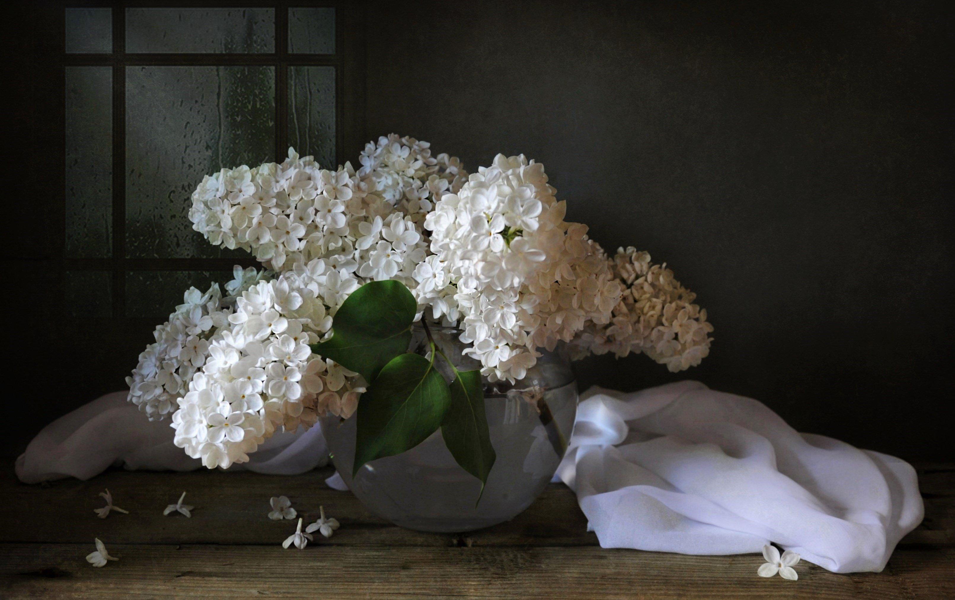весна май сирень цветы, Марина Орлова