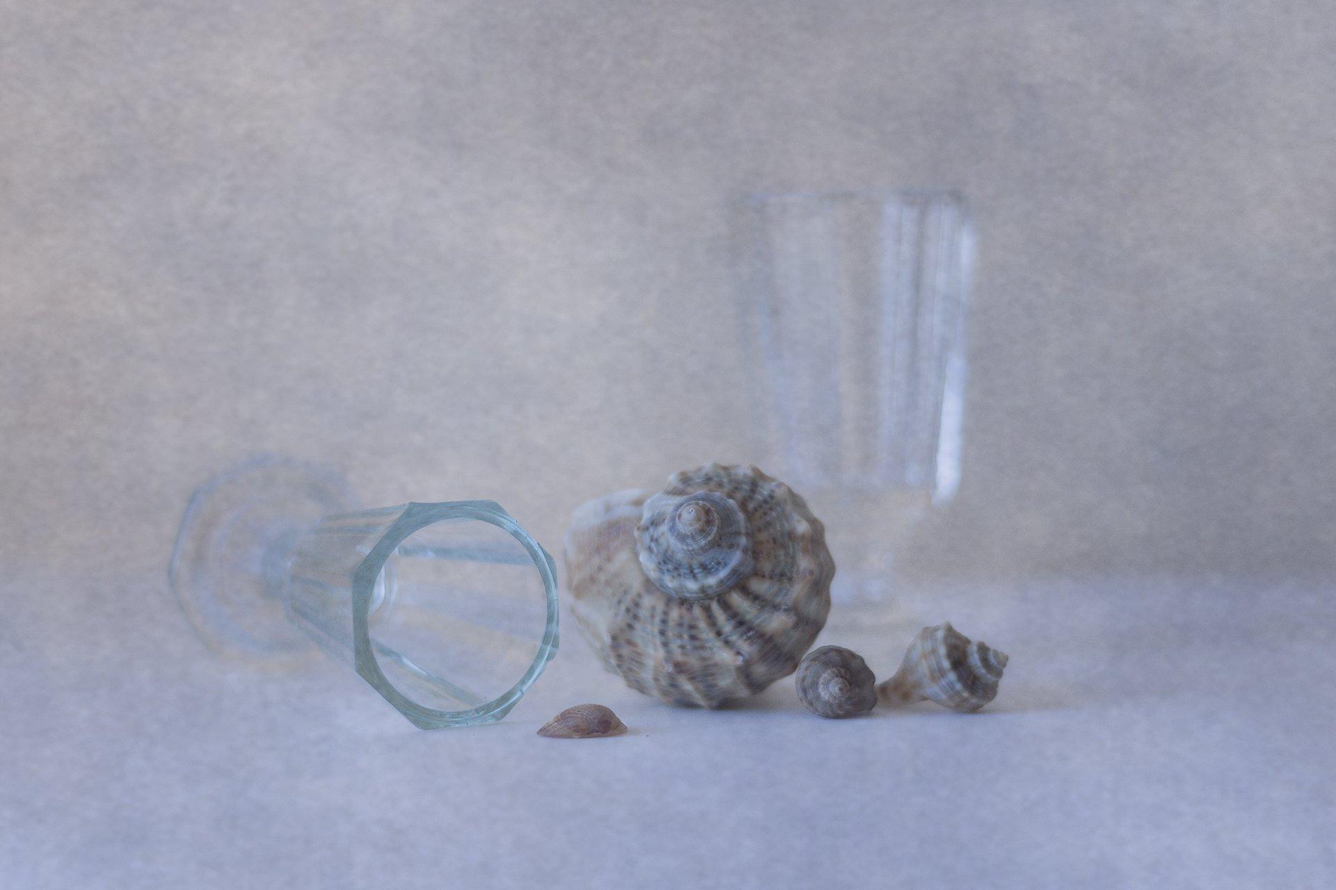 glass, shells, texture,, Anna