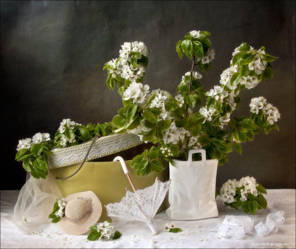 натюрморт, зонтик, кружева, шляпка, зеркало, шляпная коробка, цветущая, яблоня, Eleonora Grigorjeva