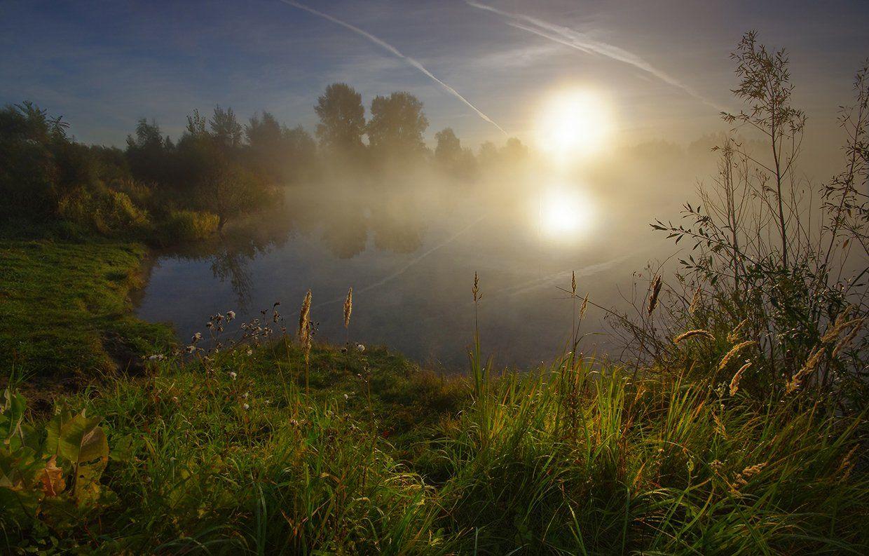 утро, рассвет, свет, осень, вода, лес, озеро, солнце, Валерий Чичкин