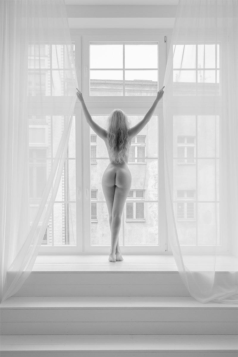 black, white, window, morning, lady, curves, Dariusz Wysocki