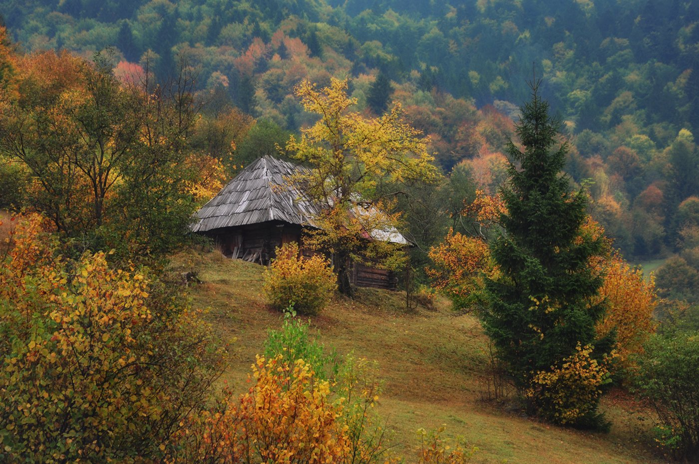 осень, горы, закарпатье, изба, Вьюшкин Игорь