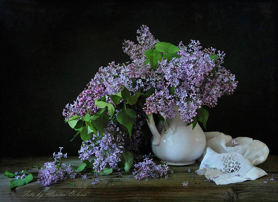лето июнь сирень цветы, Марина Орлова