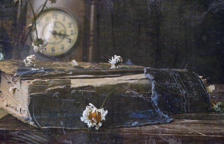 книга, часы, Курмалеева Ирина