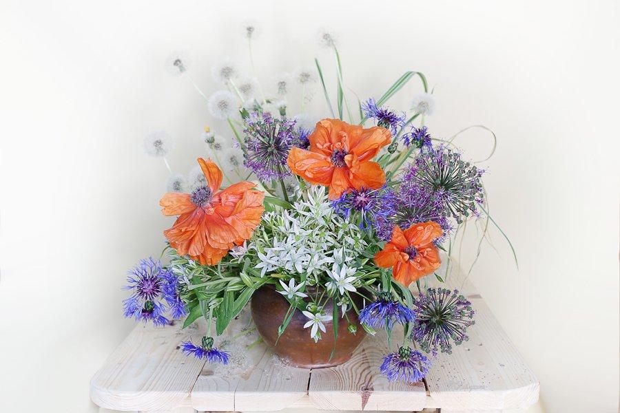 цветы,маки,звездчатка,июнь,васильки,лето,в.павлухина,, Вера Павлухина