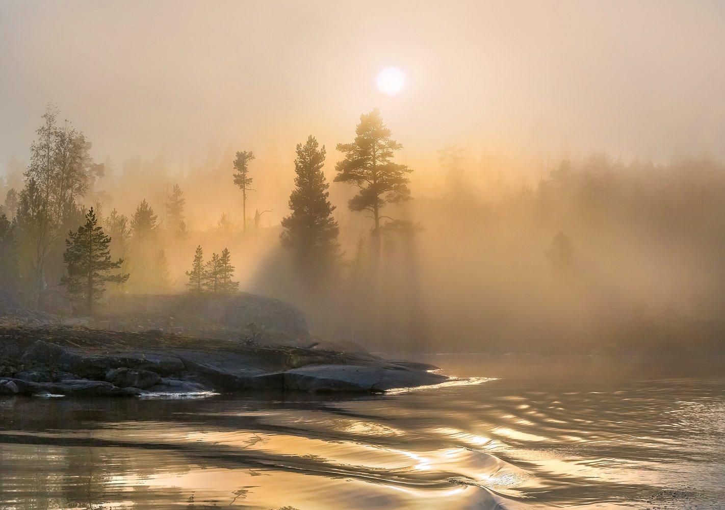 ладожское озеро, карелия, шхеры, лето, туман, скалы, лес, сосны, берег, фототур, остров, путешествие, плавание, вода, солнце, закат, отражение, лучи, Лашков Фёдор