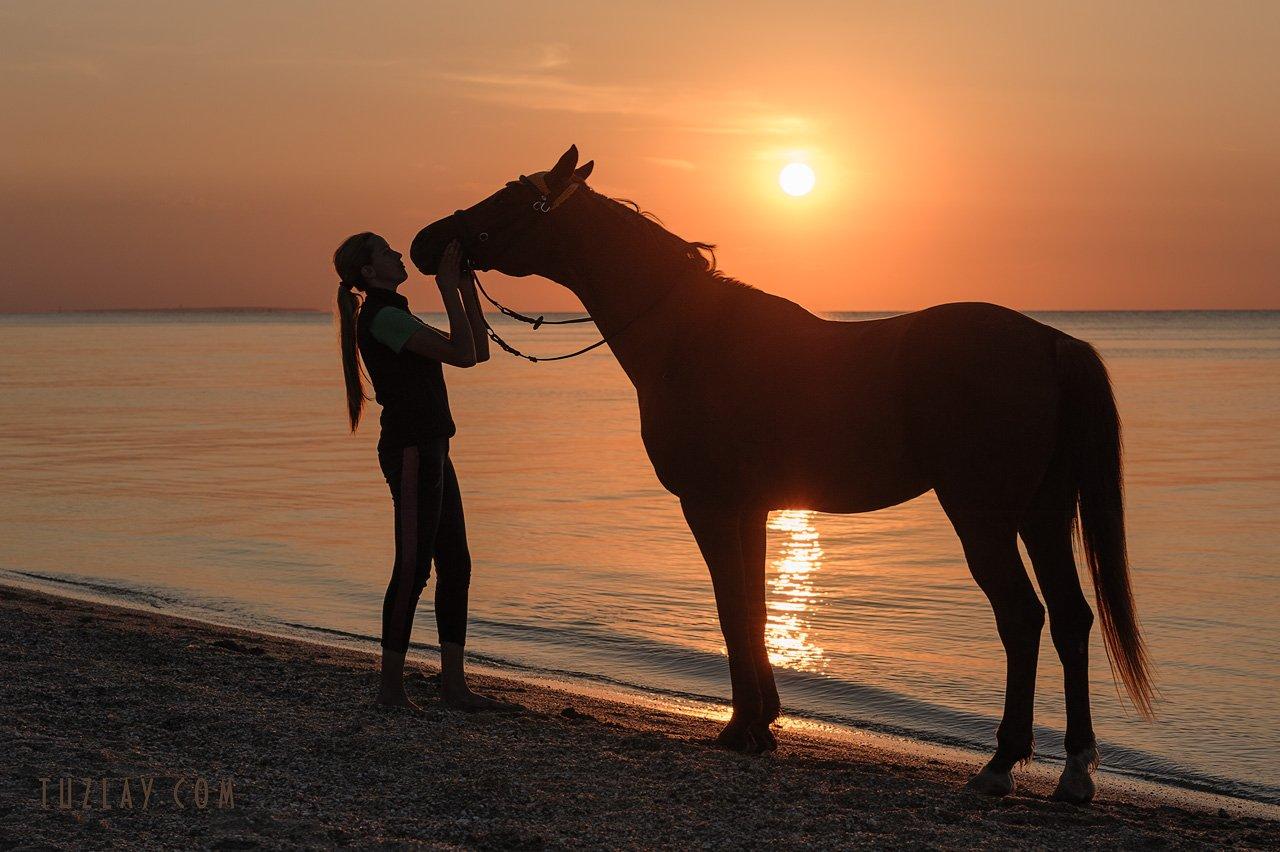 девушка и конь, лошади, азовское море, Владимир Тузлай