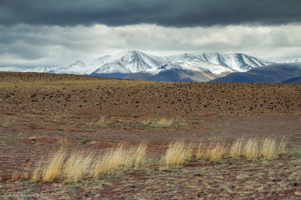 landscape, scenic, nature, travel, outdoor, view, tourism, steppe, spring, mountains, snow, sky, high, grass, Altai, Юлия Казмерчук