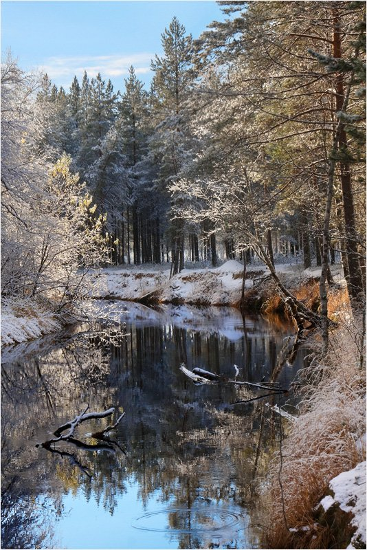 осень, зима, Илья Михайлович
