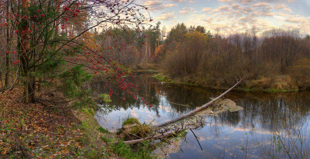 осень, река, рябина, Mishin Ilay
