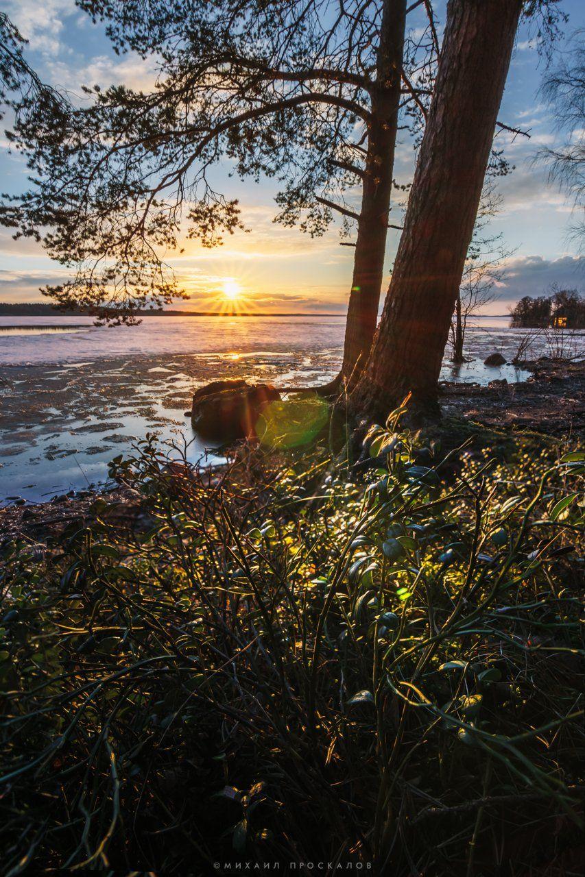 Закат, пейзаж, карелия, природа, лес, Михаил