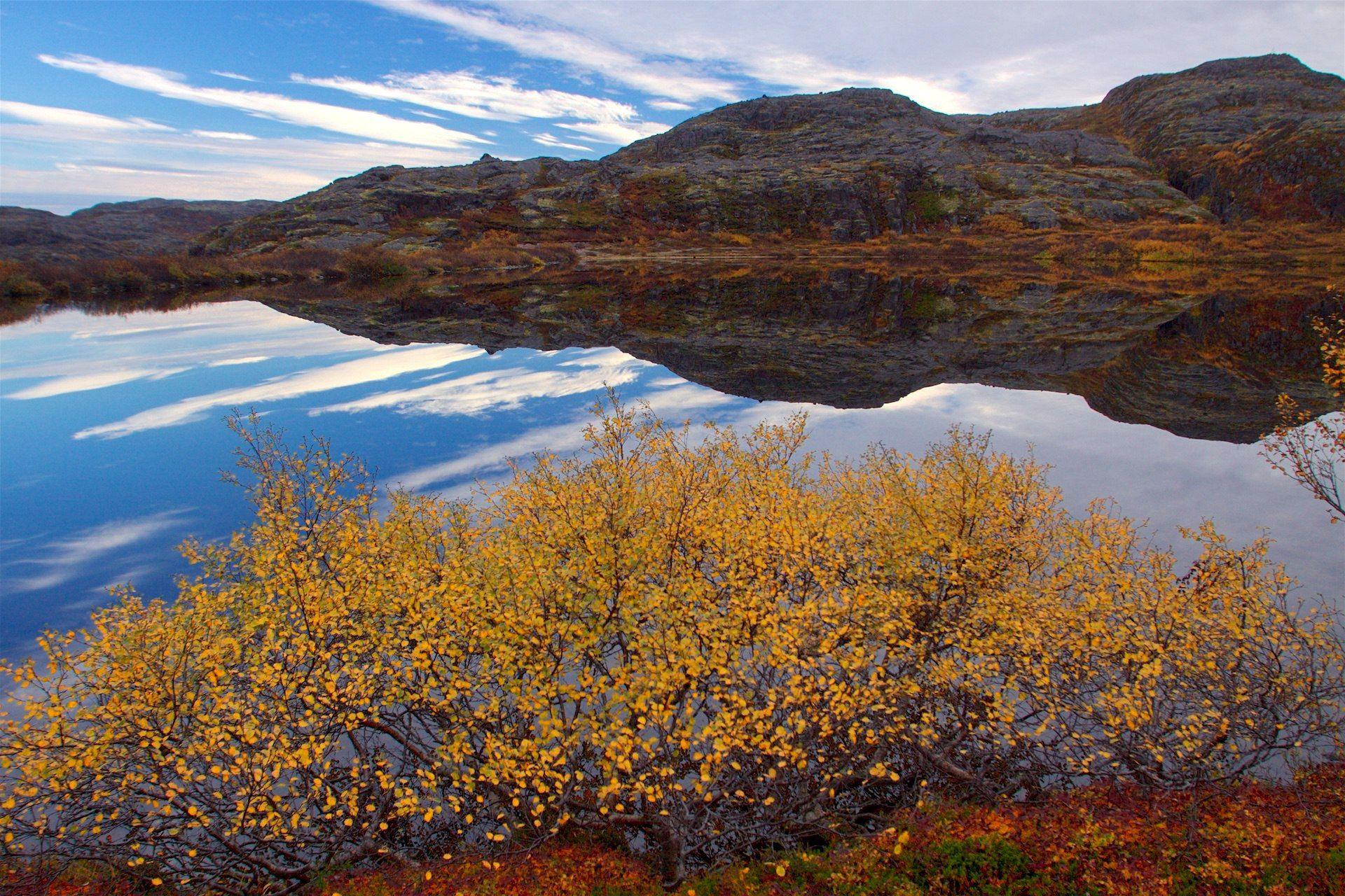 осень, Териберка, север, озеро, отражение, Никифоров Егор