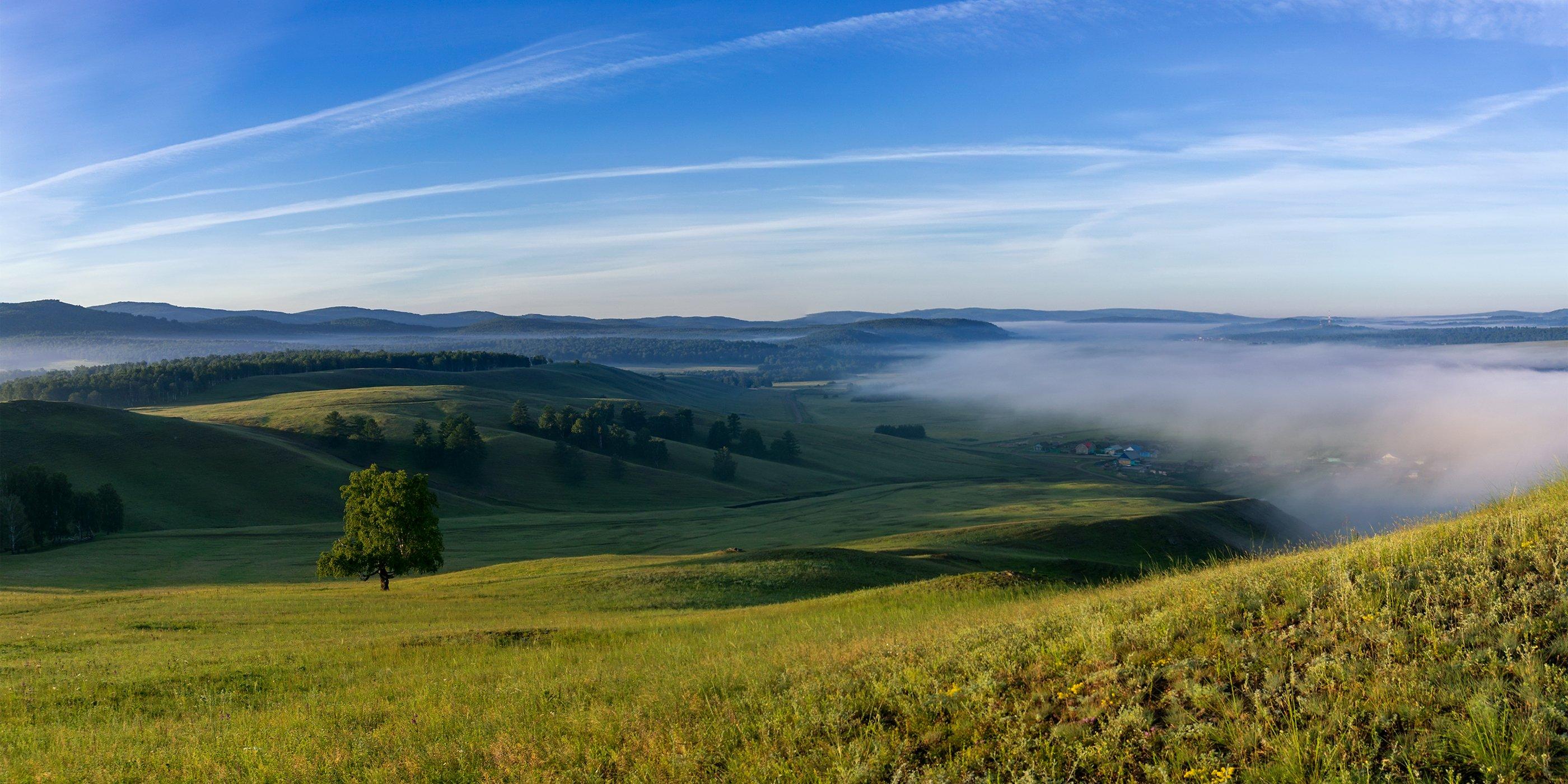 туман, утро, рассвет, Леонид