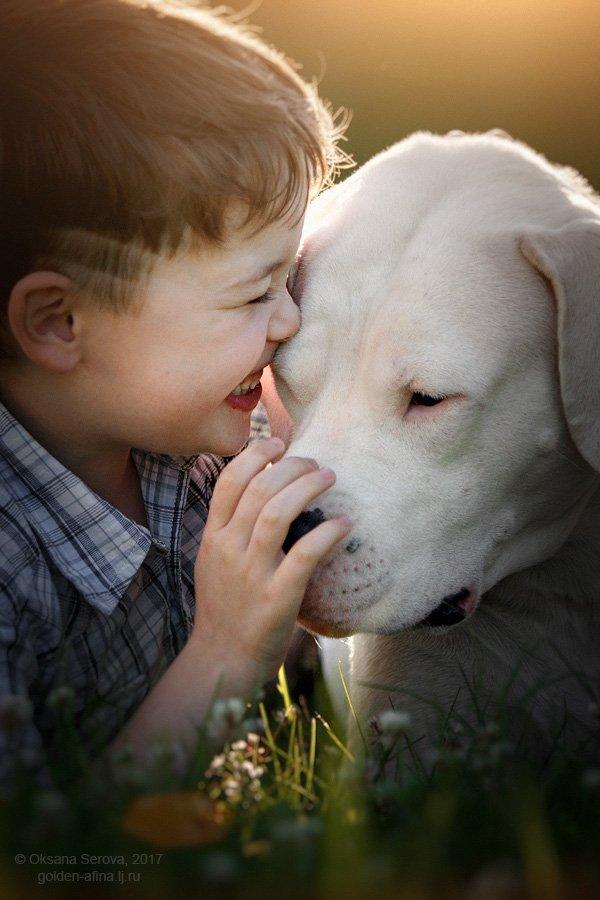 лучшие друзья, собака, ребенок, доверие, непосредственность, мальчик, друг, дружба, Оксана Серова